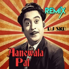 Aane Wala Pal - Remix - Karaoke Mp3 - Kishore Kumar - Dutch Style Mix