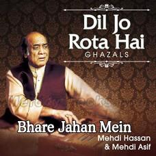 Bhare Jahan Mein Koi - Karaoke MP3 - Mehdi Hassan - Ghazal
