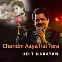Chandni Aaya Hai Tera Deewana - Karaoke Mp3 - Udit Narayan