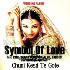 Chuuni Kesri Te Gote Diya Dhariyaan - Karaoke Mp3 - Shazia Manzoor