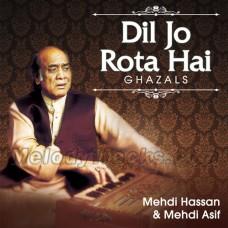 Dil Jo Rota Hai - Karaoke MP3 - Mehdi Hassan