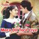 Mera Dil Tere Liye - Karaoke Mp3 - Udit Narayan - Anuradha Paudwal - Aashiqui 1990