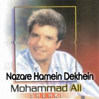 Nazare Hamein Dekhein - Karaoke Mp3 - Muhammad Ali Shehki