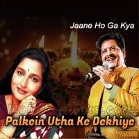 Palkein Utha Ke Dekhiye - Karaoke Mp3 - Udit Narayan - Anuradha Paudhwal