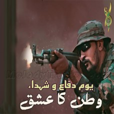 Watan Ka Ishq - karaoke Mp3 - Sahir Ali Bagga