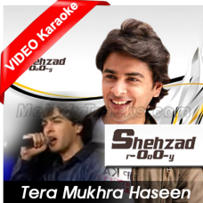 Tera mukhra haseen jadu - Mp3 + VIDEO Karaoke - Shehzad Roy