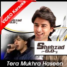 Tera mukhra haseen jadu - Mp3 + VIDEO Karaoke - Shehzad Roy