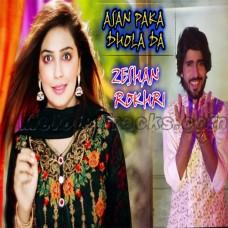 Asan Pake Dhole De - Karaoke Mp3 - Zeeshan Rokhri - Saraiki - Sindhi
