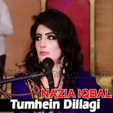 Tumhen Dillagi Bhool Jani - Without Chorus - Karaoke Mp3 - Nazia Iqbal