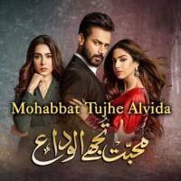 Mohabbat Tujhe Alvida Kar Diya - Karaoke Mp3 - Sahir Ali Bagga - Afshan