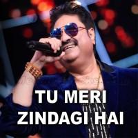 Tu Meri Zindagi Hai - Karaoke Mp3 - Kumar Sanu - Anuradha Paudwal