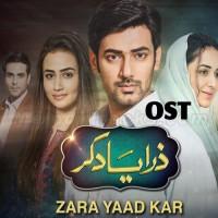 Zara Yaad Kar - Karaoke Mp3 - Rahat Fateh Ali Khan - Ost