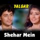 Shehar Mein Gaon Mein - Karaoke Mp3 - Kumar Sanu - Yalgaar - 1992