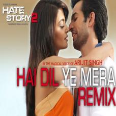 Hai dil ye mera - Karaoke Mp3 - Hate Story 2 - Arijit Singh