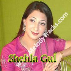 Dhari Aayan Dhari - Karaoke Mp3 - Shehla Gul - Saraiki