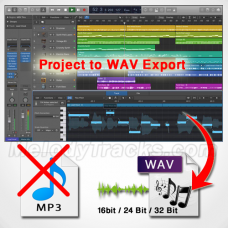 Order .WAV file of any karaoke (16 bit/ 24 bit) - Direct Export from Project Bundle